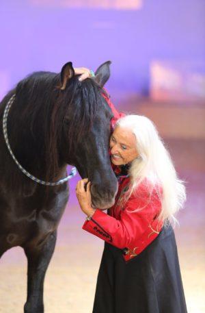 LTJ horse