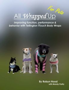 All Wrapped Up: For Pets – PDF Download