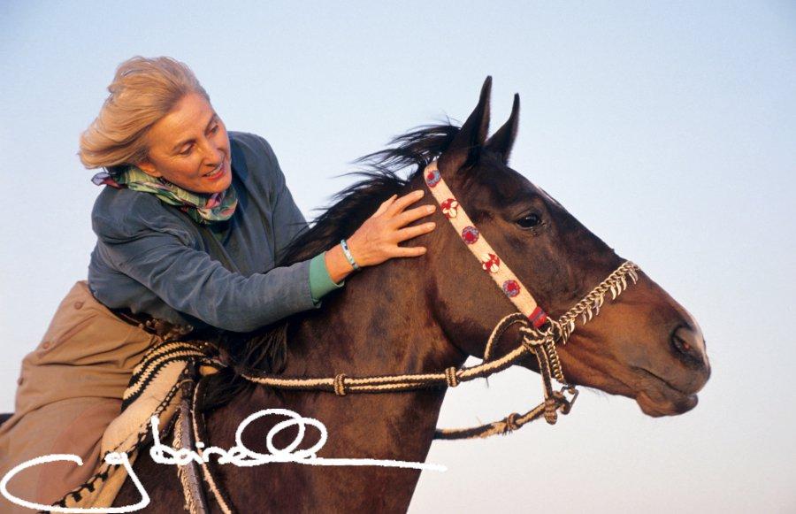 The Nervous Horse Course