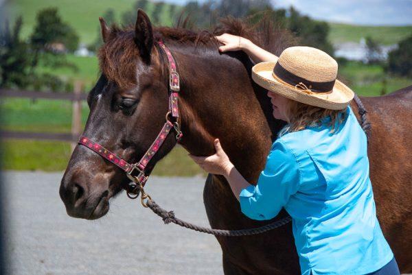KAthleen Aspenns teaching Tellington TTOuch Method Neck rock on a horse