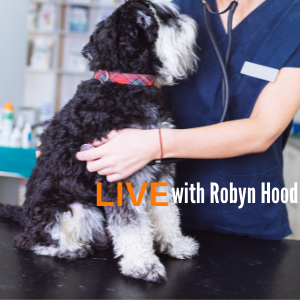 TTouch for animal Husbandry with Robyn Hood